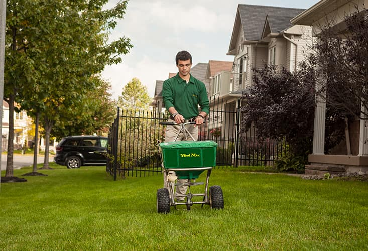 Lawn Care Coupon Knoxville, TN